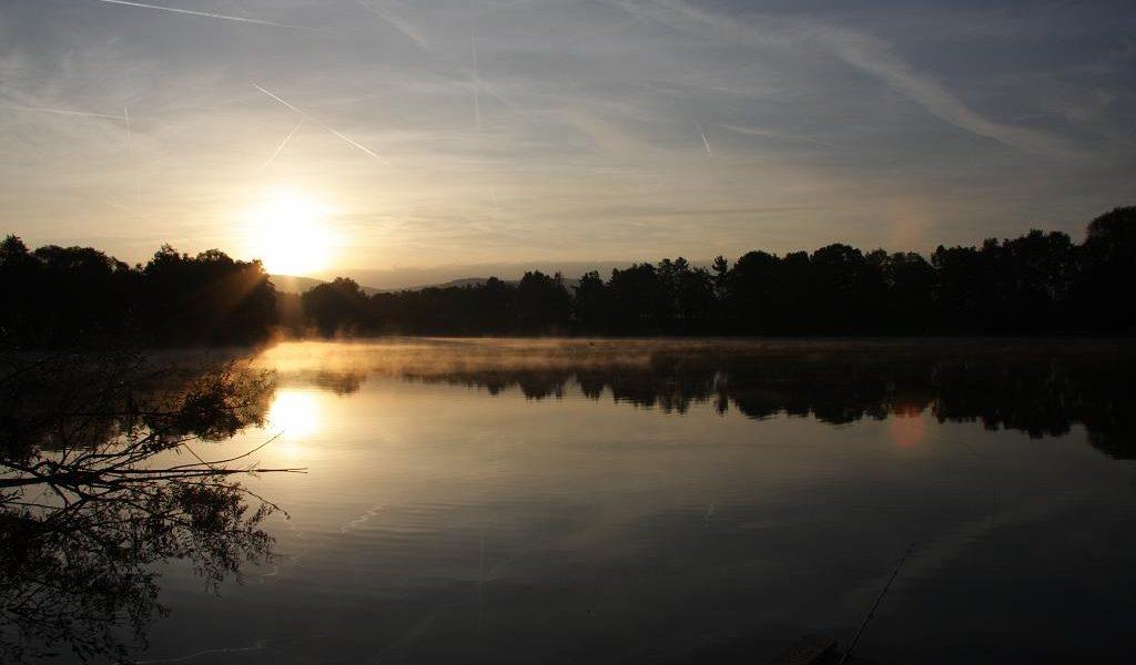 Meerhofsee Alzenau ASV Angler Club Verein (4)