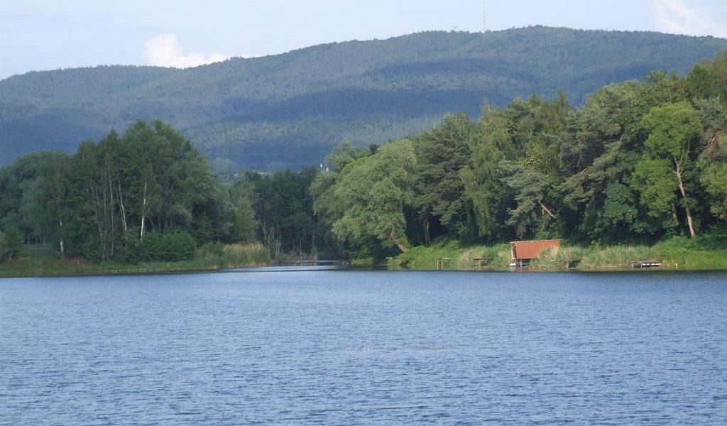 Meerhofsee Alzenau ASV Angler Club Verein (5)